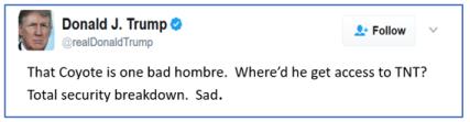 roadrunner tweet